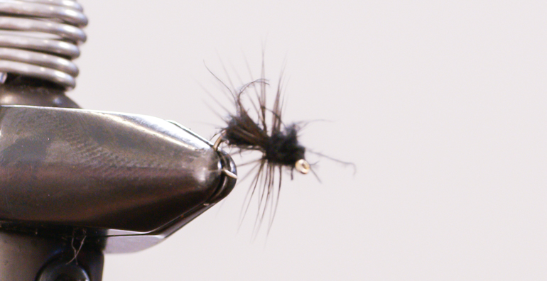 Wet Fly Ant